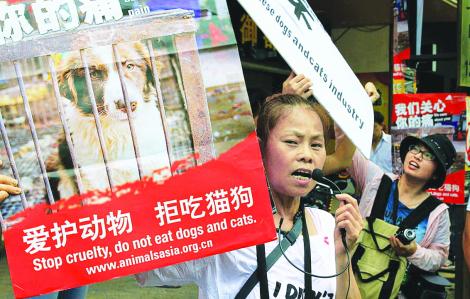 Lễ hội thịt chó Trung Quốc gây nhiều tranh cãi
