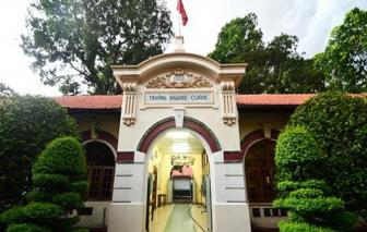 """Sự thật trường học ở Sài Gòn """"sốc"""" vì phí mé nhánh, tỉa cành cây 238 triệu đồng"""