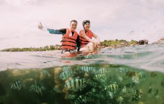 Quang Vinh, Phạm Quỳnh Anh ngồi lên san hô: Lại chuyện ý thức của người nổi tiếng