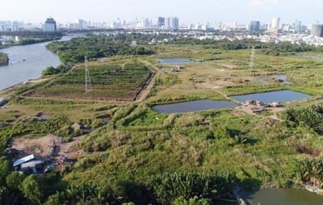 Rà soát tổng thể quy hoạch khu dân cư Phước Kiển