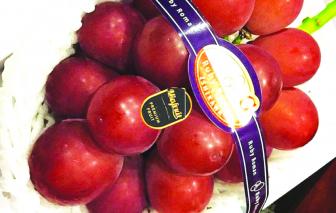 """Trái cây ngoại """"độc, lạ"""": ăn một lần cho biết vì... đắt"""