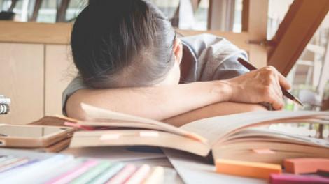 Khi học trò trải nghiệm cảm giác... con nợ