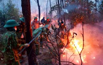 Rừng thông cháy dữ dội giữa nắng nóng, ngàn người oằn mình dập lửa cứu rừng