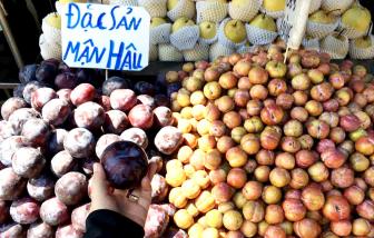 Tràn lan đào, mận Trung Quốc gắn mác Sa Pa, Hà Nội