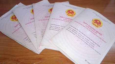 Lợi dụng hợp đồng ủy quyền để mang sổ hồng thế chấp
