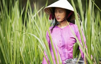 Để Liên hoan phim Việt Nam thành thương hiệu quốc gia: Giấc mộng trầm kha