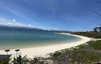 Canh rùa đẻ, ngắm san hô và những bãi biển đẹp mê hồn ở Hòn Cau