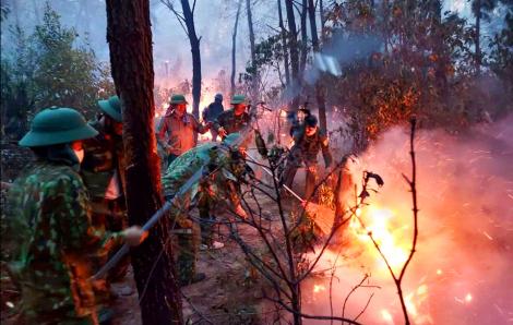 Rừng keo bốc cháy trong đêm do sét đánh
