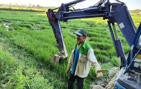 Công ty Đất Xanh Quảng Ngãi ngang nhiên càn quét, lấp ruộng của dân để làm dự án bất động sản?