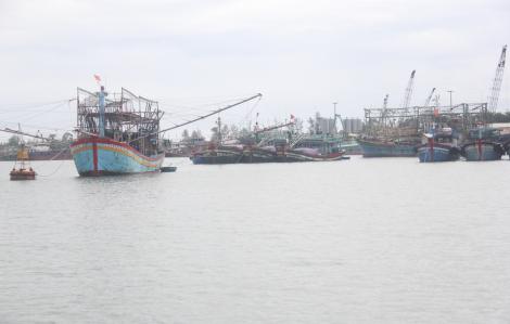 Vụ đâm chìm tàu cá: Tàu hàng xin lỗi và nhận trách nhiệm