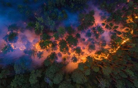 Cháy rừng khốc liệt ở vùng đất lạnh giá quanh năm