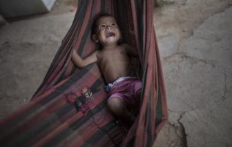 Mỗi tháng, 10.000 trẻ em trên thế giới chết đói vì COVID-19
