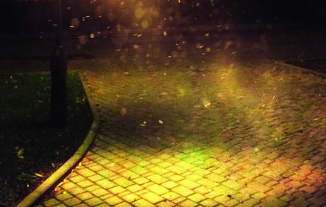 Truyện ngắn - Dưới cột đèn
