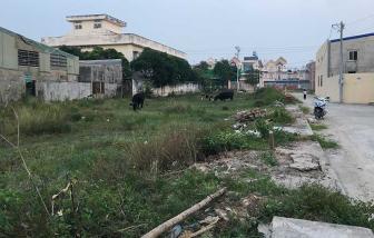 Huyện Hóc Môn giải quyết hồ sơ đất đai trễ hạn lên đến 323 ngày