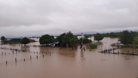Đắk Lắk: Mưa 1 đêm, nhiều nhà dân chỉ còn lại mái nhà
