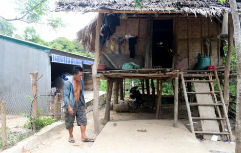 Khởi tố quyền trưởng phòng, giám đốc doanh nghiệp liên quan đề án xây nhà ở cho bò ở Nghệ An