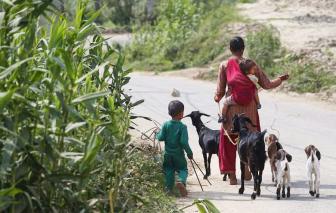 COVID-19 làm trầm trọng thêm sự bất bình đẳng ở Nepal