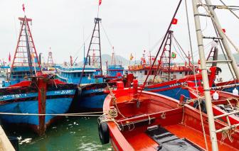 Nghệ An cấm biển, sẵn sàng di dời hơn 16.000 người tránh bão số 2