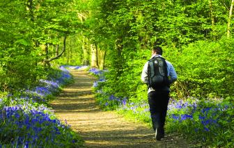 """""""Kê toa xanh"""" khuyến khích người dân tìm về thiên nhiên"""