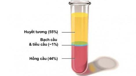 Bệnh nhân hết COVID-19 hiến huyết tương có hại gì không?