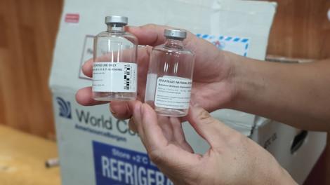 Thuốc giải cho bệnh nhân ngộ độc pate Minh Chay giá 8.000 USD/lọ, có tiền chưa chắc mua được