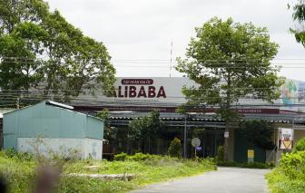 Bắt giám đốc công ty thi công hạ tầng dự án cho Alibaba