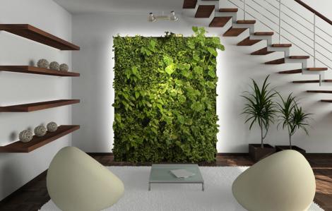 Tường xanh trong nhà - tấm chắn bảo vệ sức khỏe gia chủ