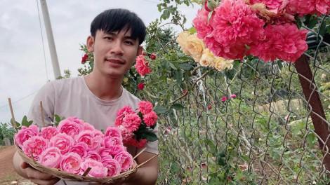 Chàng trai 23 tuổi mỗi ngày chăm sóc 2.000 gốc hồng, tận hưởng đời sống thôn dã
