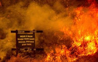 Ít nhất 49 người thương vong sau thảm họa cháy rừng tại California