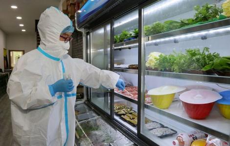 Không tìm thấy virus SARS-CoV-2 trên bao bì và trong thực phẩm đông lạnh vào Việt Nam