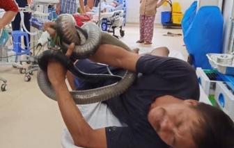 Ba tôi đánh cược tính mạng với nghề bắt rắn để nuôi con ăn học