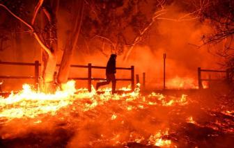 Vì sao California xảy ra những đợt hỏa hoạn khủng khiếp?