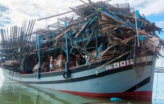 Tàu hàng đâm tàu câu mực khiến 1 người bị thương, tàu hư hỏng nặng