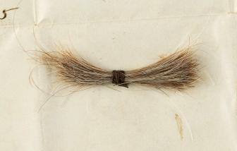 """Lọn tóc người chết và bức """"huyết thư"""" được rao bán với giá mong đợi gần... 2 tỷ đồng"""