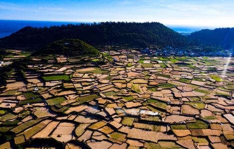Đảo Lý Sơn được phép đón khách du lịch trở lại