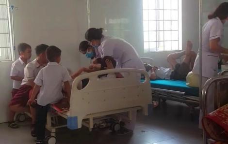 26 học sinh bị ong đốt nhập viện ngay ngày đầu đi học