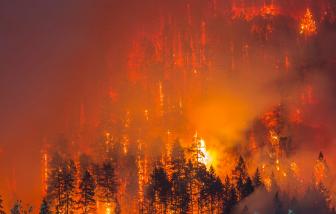 Hàng chục người mất tích vì cháy rừng tại bang Oregon, Mỹ