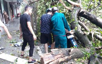 Thừa Thiên - Huế: 3 người tử vong do bão số 5