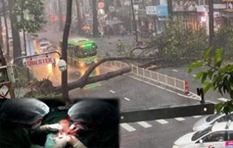 Nam bệnh nhân tử vong do cây đè trong cơn mưa để lại con nhỏ 3,5 tuổi