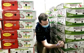 Vào được thị trường Âu, Mỹ... trái cây rộng đường xuất khẩu