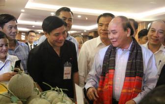 """Thủ tướng Nguyễn Xuân Phúc: """"Không được phá rừng tự nhiên để trồng cà phê"""""""