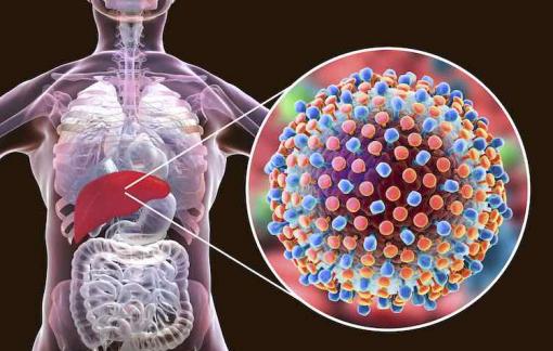 Bệnh viêm gan C nguy hiểm như thế nào?