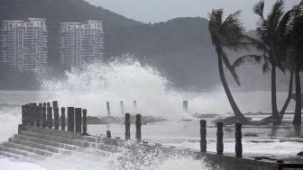 Cách tránh bão trong nhà chung cư cao tầng