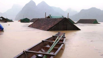 Hỗ trợ ngay 1.000 tấn gạo cho mỗi tỉnh bị thiệt hại do lũ lụt
