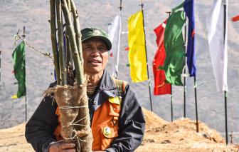 Người đàn ông đơn độc trồng rừng, bảo vệ thế giới tự nhiên