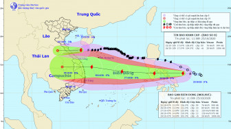 Bão số 8 chỉ còn cách đất liền Hà Tĩnh đến Quảng Trị 200km, gió giật cấp 11