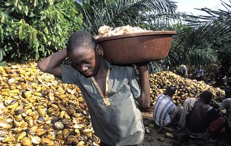 Sau những thanh chocolate ngọt ngào là đắng cay của trẻ em châu Phi