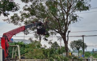 Đà Nẵng cho học sinh nghỉ học 2 ngày tránh bão số 9