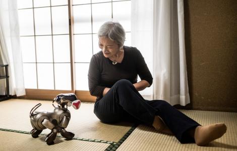 Người dân Nhật Bản dùng robot để xua đi nỗi cô đơn vì đại dịch