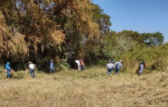 59 thi thể được tìm thấy trong hố chôn bí mật tại Mexico
